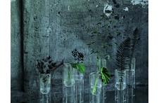 Tutube | Vase | Glas Italia