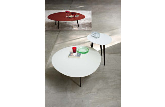 Flowers | Dining Table | LEMA